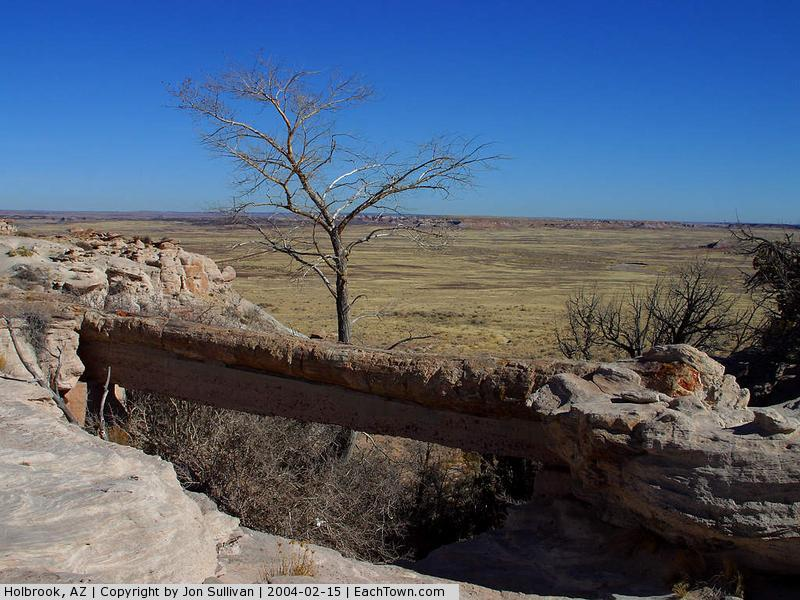 - Agate bridge at the Petrified Forest National Park