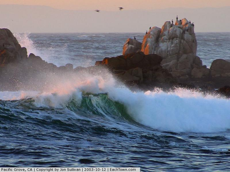 - Waves at Asilomar Beach
