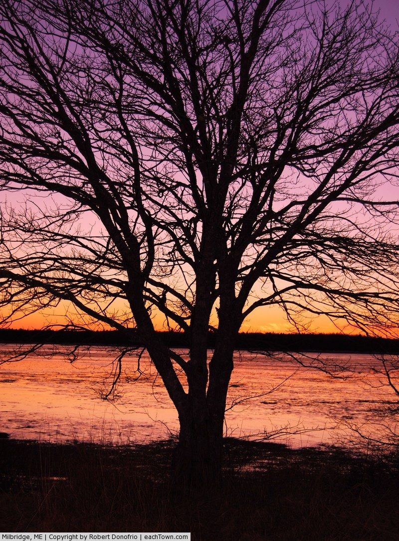 - Sunset at  Back Bay Milbridge
