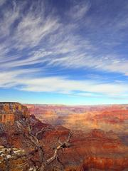 From the rim of the Grand Canyon