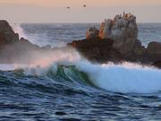 Pacific Grove, CA - Waves at Asilomar Beach